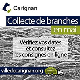 Carignan_carré_mai_2020