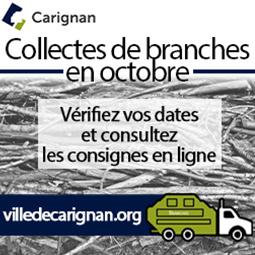 Carignan_carré_août_2020